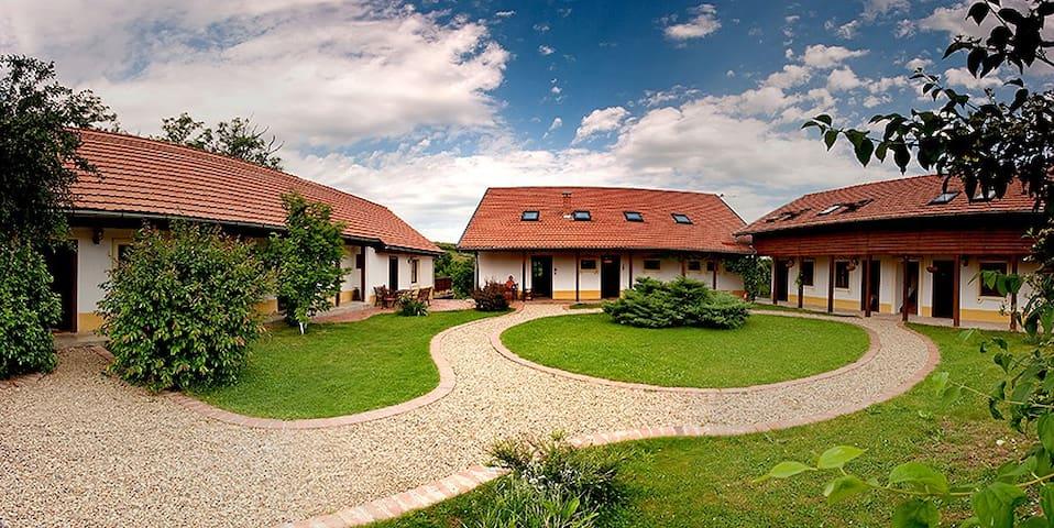 Casa Altringen - Bogda - บ้าน