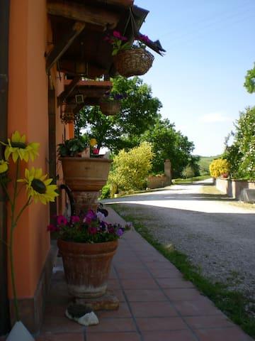 In lontananza il cancello di entrata al casale.