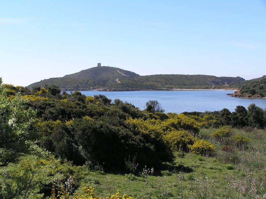 Capo Malfatano e la spiaggia di Malfatano