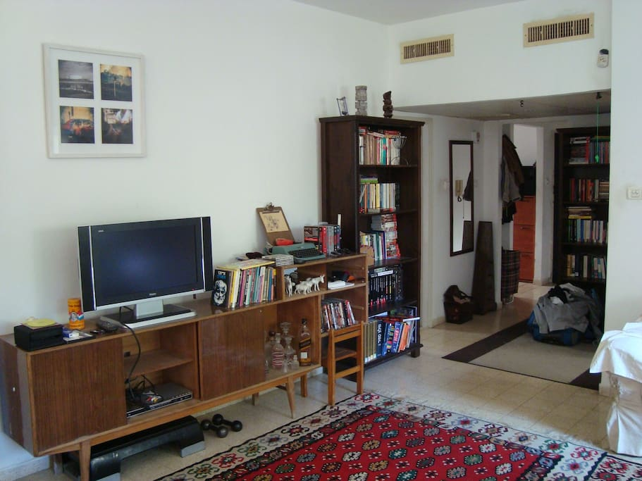 our great and roomy living room/library