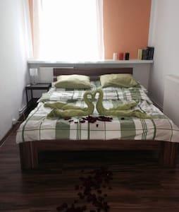 Gemütliche Wohnung  - Świeradów-Zdrój - Leilighet