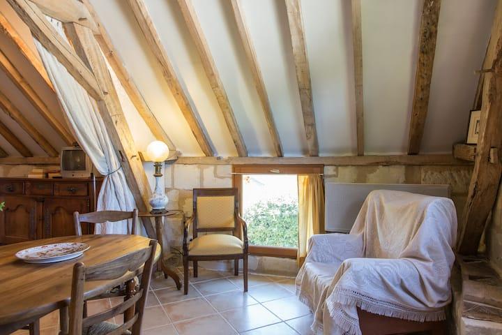 Le toit vieux des bords de Loire