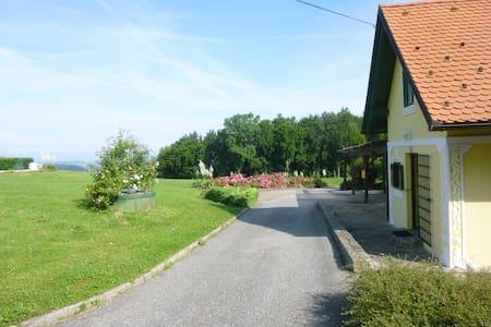 Winzerhaus Südsteirische Weinstraße - Leibnitz - Casa de huéspedes