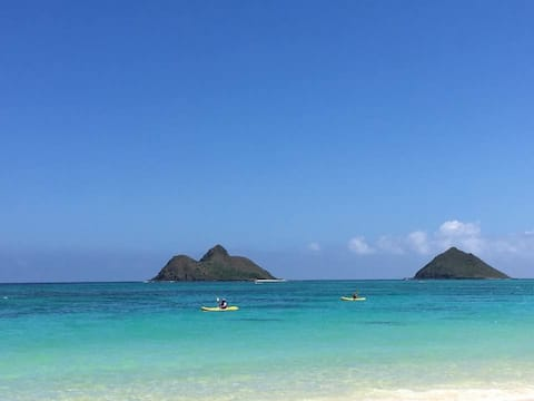 Divine Find Lanikai Beach, Legal Vacation Rental