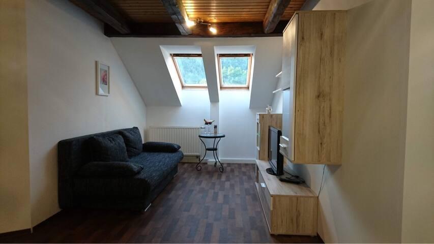 Moderne Dachwohnung in der Sächsischen Schweiz