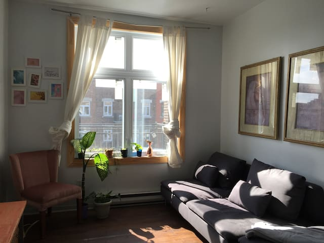 Beautiful spacious little studio in Villeray