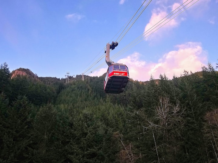 Skyride Gondola-the extraordinary ride