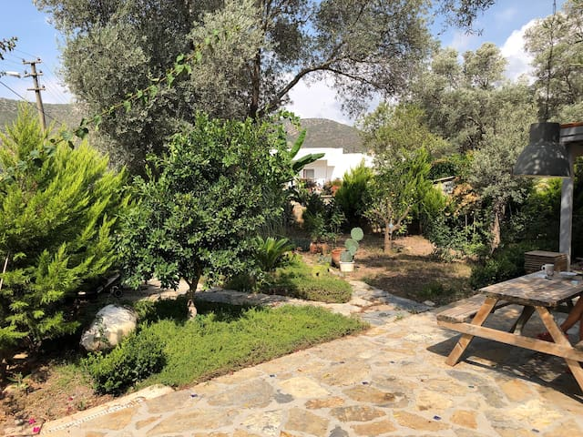Splendid, secluded private home close to town