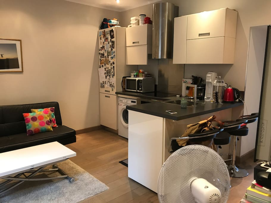 Salon et cuisine depuis l'entrée