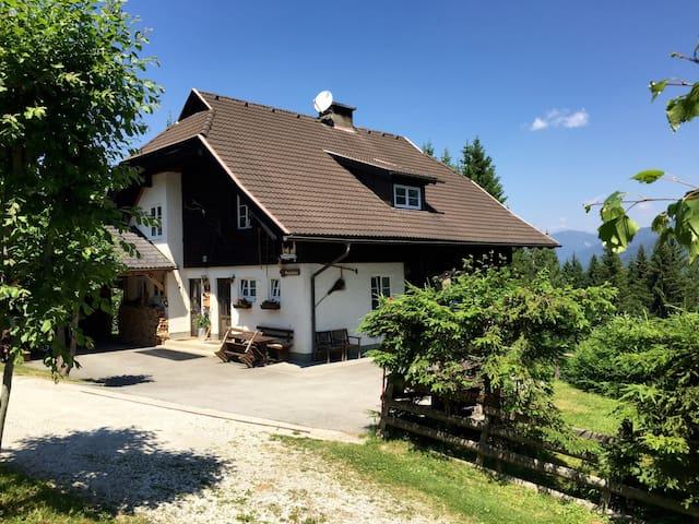 Apartment Almhaus Puschitz 2 (40qm) - Verditz