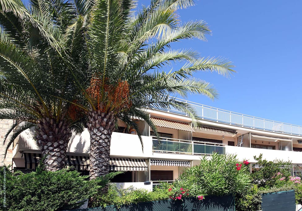 2 pi ces 50m2 quartier palm beach appartements louer for Location garage cannes palm beach