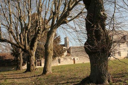 Ferme ancienne (15ème/16ème siècle) - Chezelles - Talo