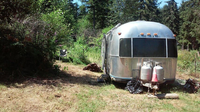 Glamcamp among the Evergreens! - Roy - Autocaravana