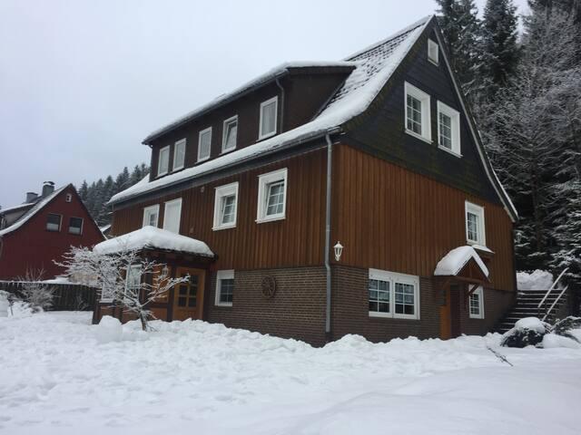 Silberwald 2