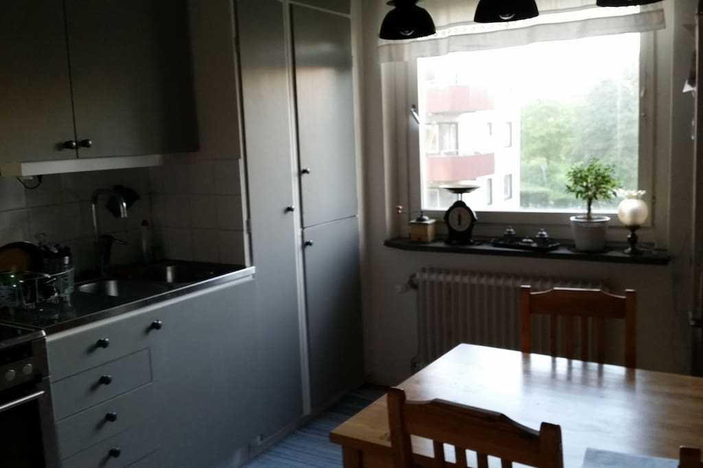 Useful kitchen and spacial for a one room apartment