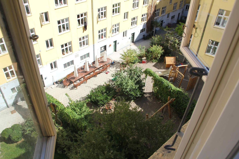 View of backyard from bedroom window.