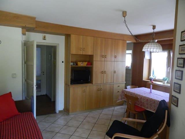 Cavalese: appartamento con giardino