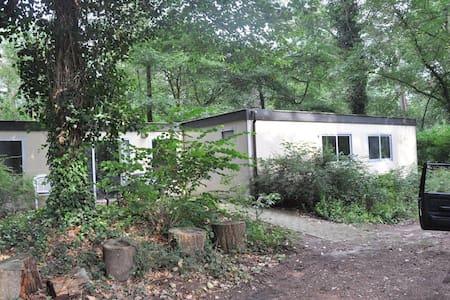 Boshuisje op BC Ruighenrode - Lochem