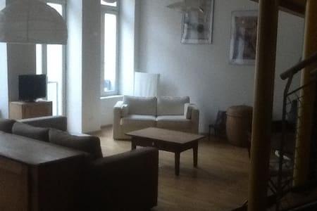 Loft atypique en duplex plein centr - Strasbourg