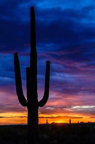 CLOSE TO MOUNTAIN TRAILS - Tucson - Ház