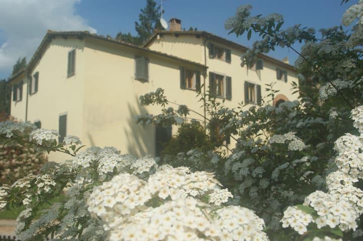 Oasi di verde e di relax - Lorenzana - Daire