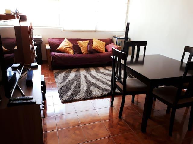 Apartment in Providencia, subway Pedro de Valdivia