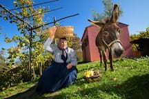 Savrin woman & Istrian donkey