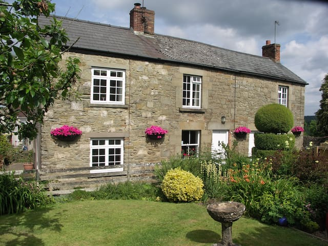 Traditional Foresters Cottage - Bream, Lydney - Casa