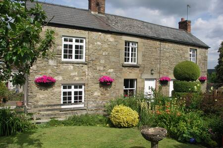 Traditional Foresters Cottage - Bream, Lydney - House