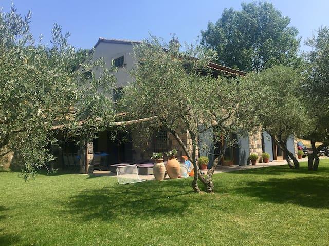 Casale di campagna tra gli ulivi - Melizzano - Vila