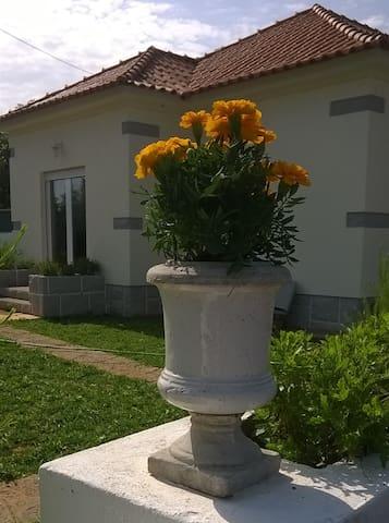 Villa simpática em espaço de quinta - Cascaes - Casa