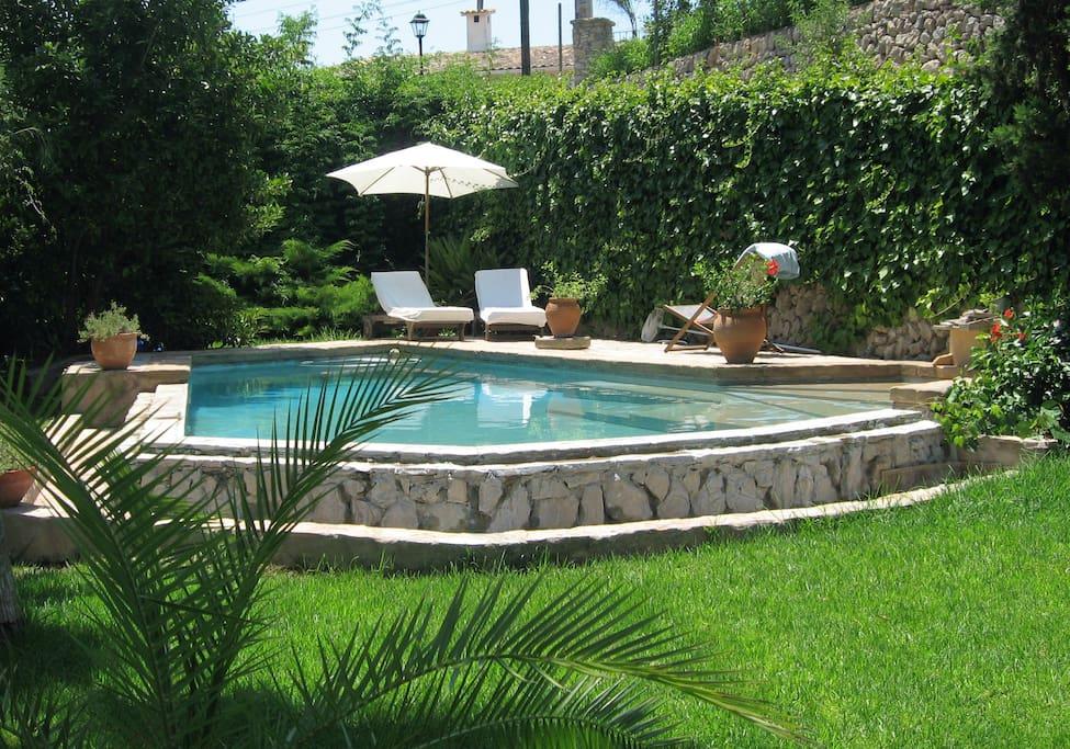 Pool with sunbathing terrace