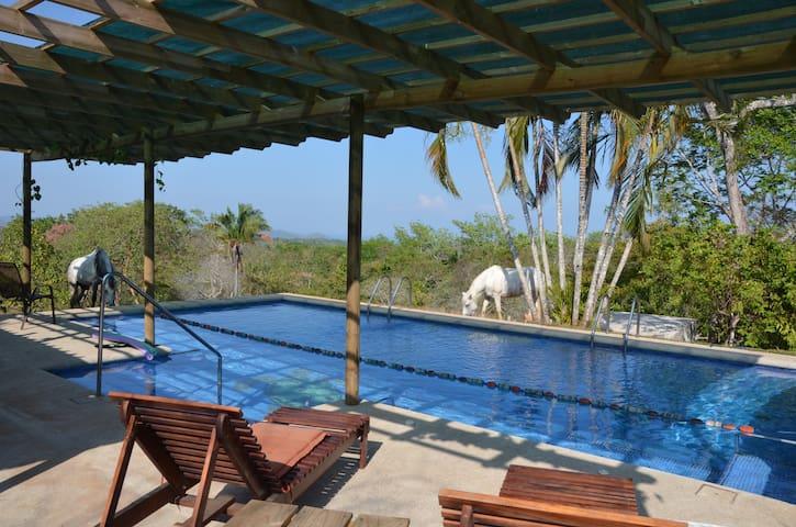 Vista Mar Room Bellavista Montezuma - Montezuma - Rumah