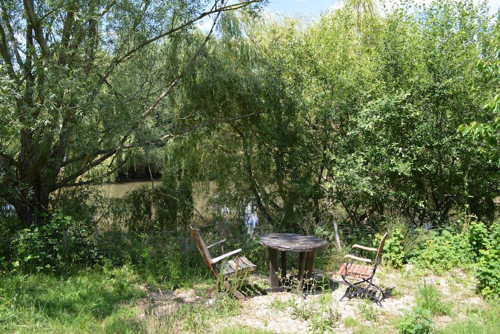 Aux bords de l'étang…