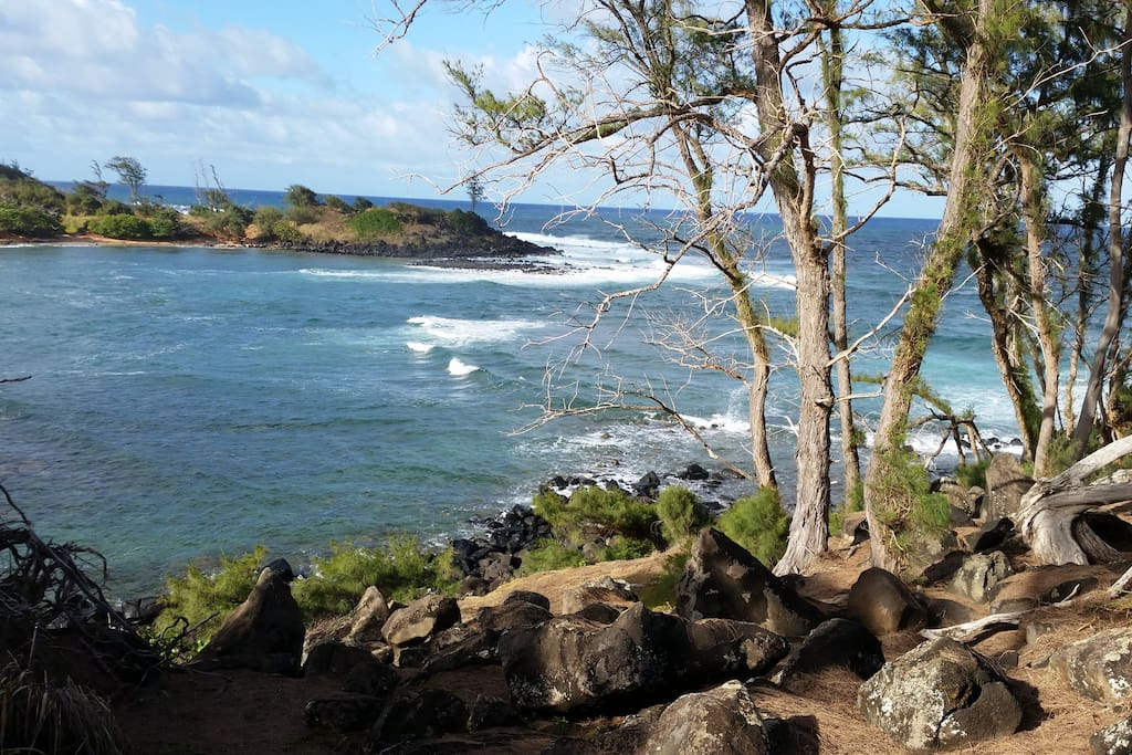 easy bike ride to nearby secluded beaches