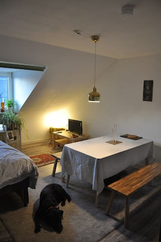Lovely Loft Room in Central Frankfurt (Nordend)