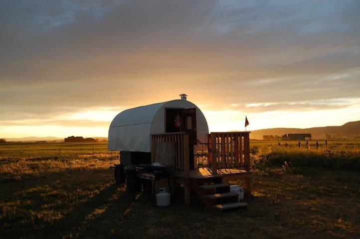 Antique Montana Sheepherder's Wagon - Belgrad - Diğer