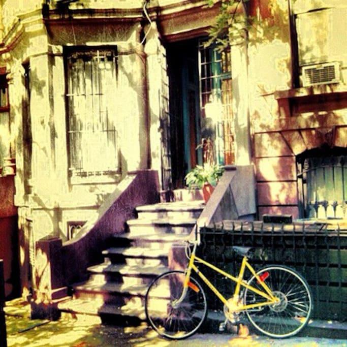 Classic Brooklyn Brownstone buildings