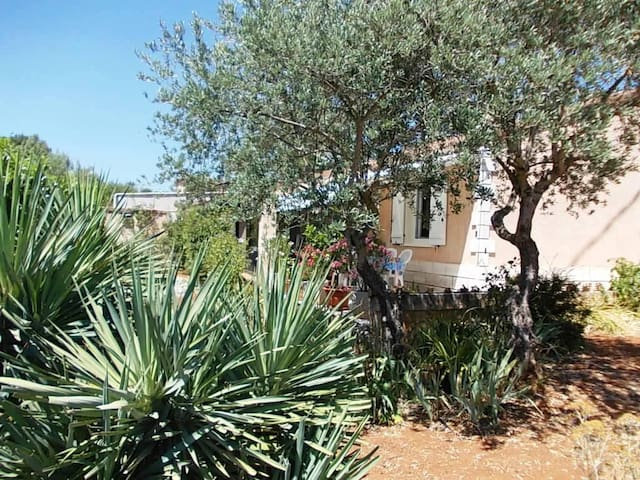 Very quiet house with swimming pool - Saint-Maximin-la-Sainte-Baume - Apartamento