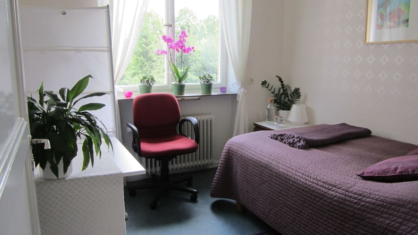 Cozy room on Kungsholmen - Stockholm - Apartment