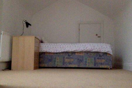 cosy attic room suitable for female guests - Cork