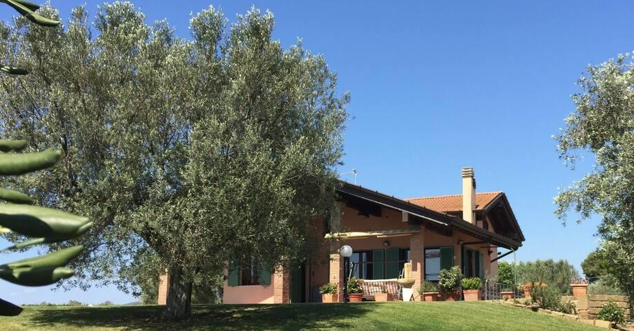 Maremma Holiday House - Montalto di Castro - Tatil evi