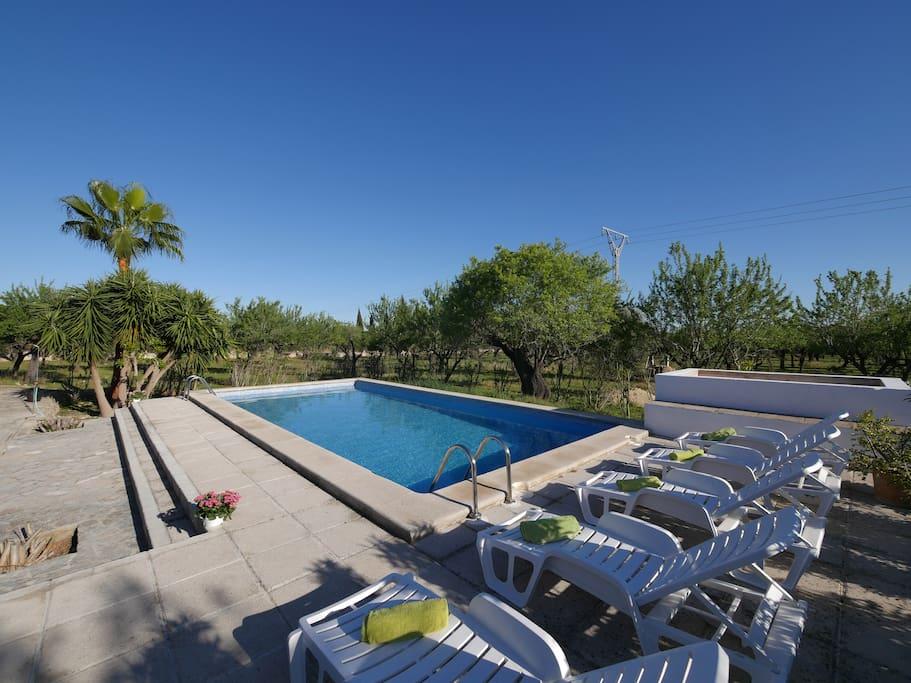 Pool Area 1-4