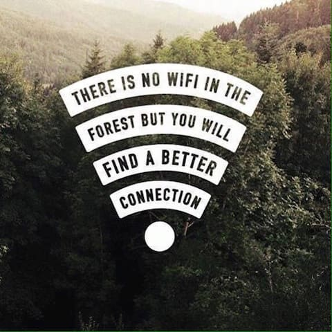 No wifi, No TV just be and reconnect with yourself.