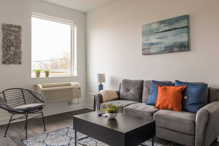 Charming + Open 1BR Apt in Macalester-Groveland
