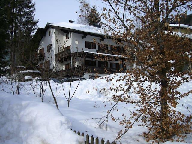 Gemütliches Doppelhaus mit viel Platz - Hinterglemm - House