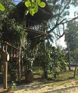 Bansai Guest house