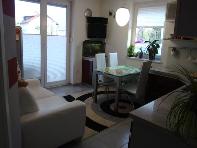 Tiny and sweet - Kranj - Apartament