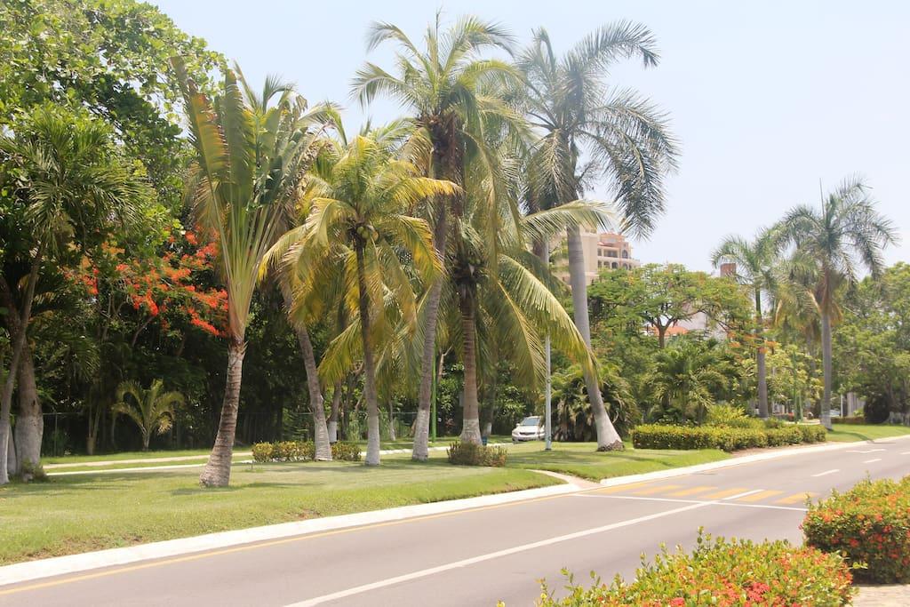 Circulando por el Boulevard Paseo de Ixtapa, pasando El Barceló.