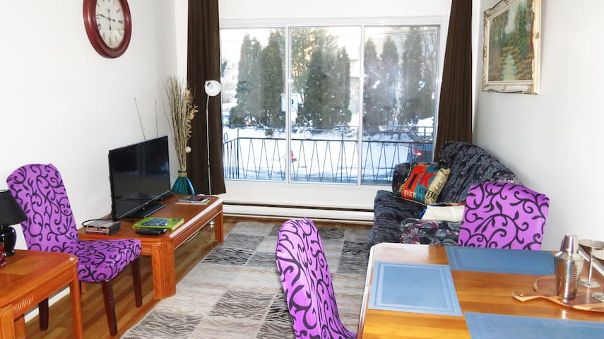 Lovely apartment in Montreal! - Montréal - Wohnung